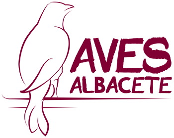 Aves Albacete
